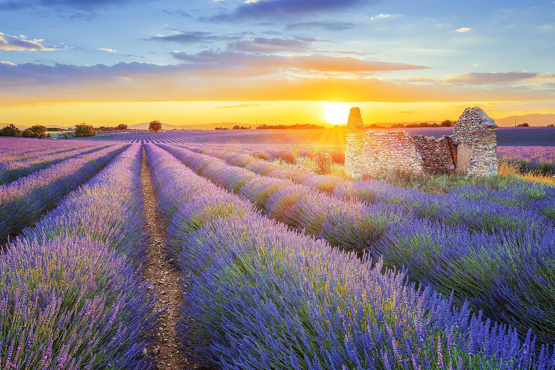 Provence Pháp